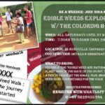 <b>Audible Weed Walk – ep.30 Where the journey truly started</b>