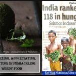 <b>Audible Weed Walk – ep.31 Recognizing, appreciating and eating is unshackling weedy food</b>