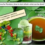 <b>Audible Weed Walk – ep.41 Time for Pandum, time to start afresh: what can be  done?</b>