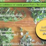 <b>Audible Weed Walk - ep.47 Culinary confidence w/ weedy greens Part 1: the precursors</b>