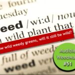 <b>Audible Weed Walk – ep.51 If I grow wild weedy greens, will it still be wild?</b>