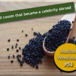 <b>Audible Weed Walk – ep.53 The wild cousin that became a celebrity abroad</b>