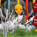 <b>Audible Weed Walk – ep.59 Mahalaya & Cattail</b>