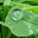 <b>Raining again</b>