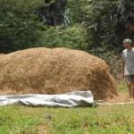 <b>Organic Farming</b>
