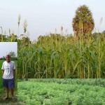 <b>Tomas talks about Annapurna farm</b>