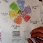 Les 6 couleurs des protagonistes
