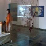 <b>Synergy Shakti 2009</b>