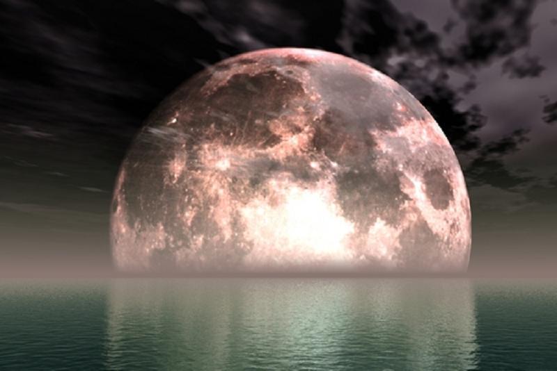 Photographer:   Full Moon
