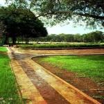 <b>Passeggiando nei giardini</b>