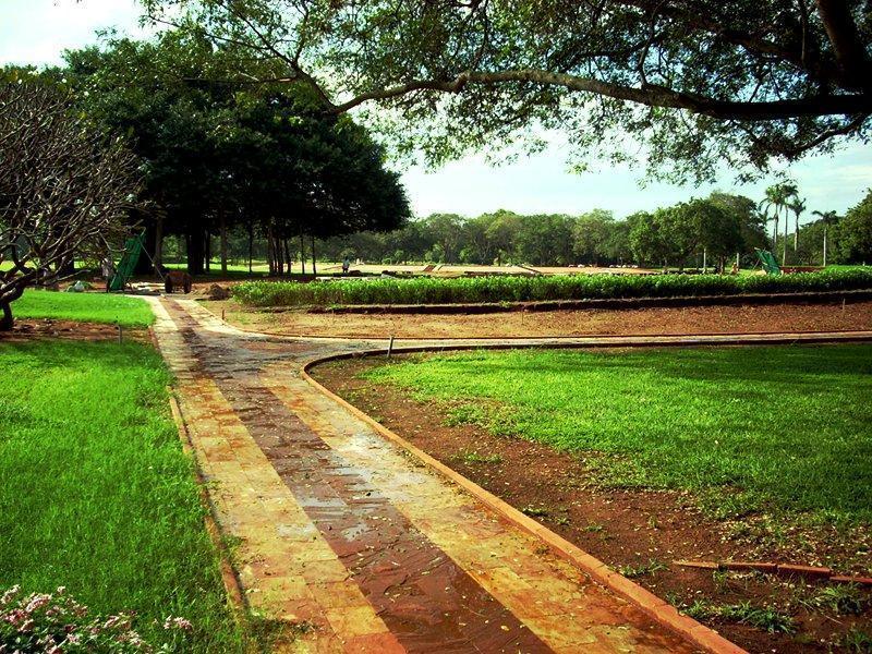 Photographer: | Visuale sul centro geografico di Auroville