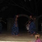 <b>The African Night</b>