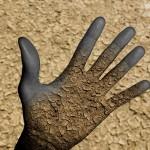 Une main en mutation