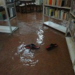 <b>Swimming Books?</b>