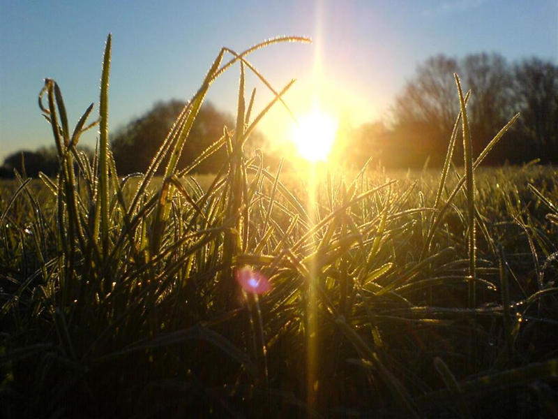 Photographer:web   New Light of Winter Solstice