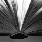 <b>The Pleasure of Reading</b>