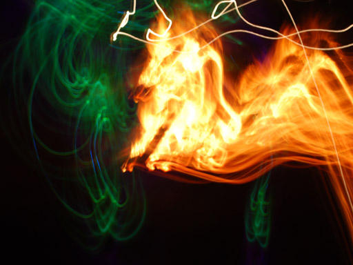Photographer:web | Fire Dragon