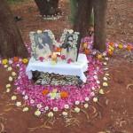 <b>Auroville Institute Integral Health</b>