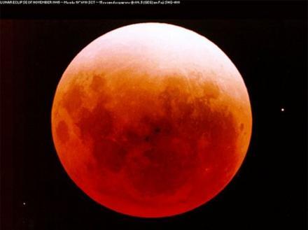Photographer:web | Total lunar eclipse