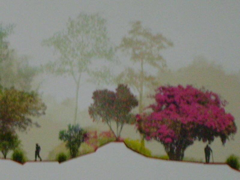 Photographer:miriam | Mahalakshmi Garden