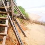 <b>Beach Community or Sea?</b>