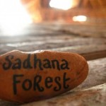 <b>Residental Zone &amp;amp; Sadhana Forest</b>
