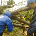 <b>Cyclone Thane first report</b>