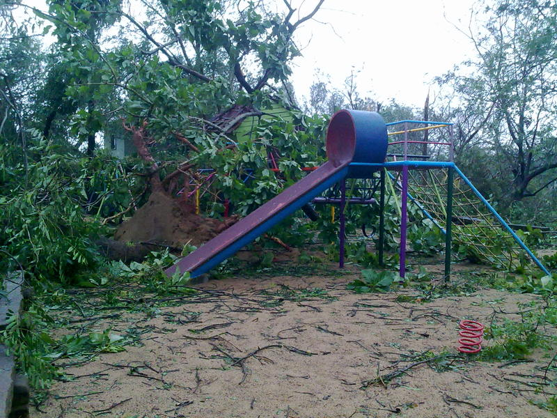 Photographer:Andrea | A big trees collapsed on the playground in Certitude