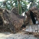 <b>Emergency for cyclone</b>