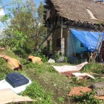Most of the houses built with traditional technologies were flatten down or badly damaged