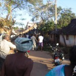 Electrical poles felt down all over Auroville