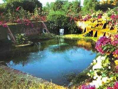 Photographer:www.auroville.org | waste water treatment