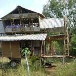 <b>The Ladder House</b>