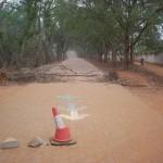 Auroville road building