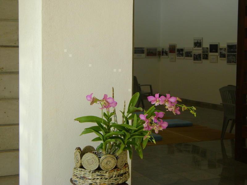 Photographer:Alma | Exhibition