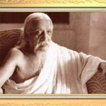<b>The Lives of Sri Aurobindo</b>
