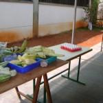 Food Link working space