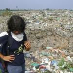 <b>Environmental Concerns</b>