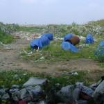 Mountains of garbadge of the Karuvadikuppam dump site.
