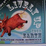 Lively Up Your Earth - eco music festival
