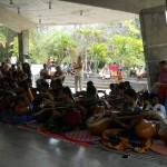Veena musicians