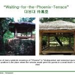 Phoenix Terrace