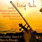 Tlyer Carson - Living Violin