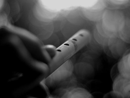Photographer:web | flute