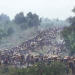 Rwanda - Genocide in 1994