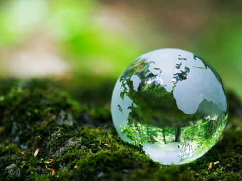 Photographer:web   Earth Day