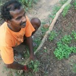 Elumalai speaking about soil and plant care