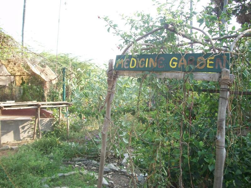 Photographer:Kristen | Circular medicine garden