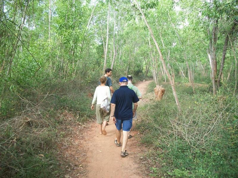 Photographer:Kristen | Walking along a Bliss Forest path