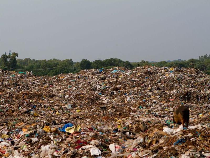 Photographer:web | Garbage - Kuruvadikkupam dump site
